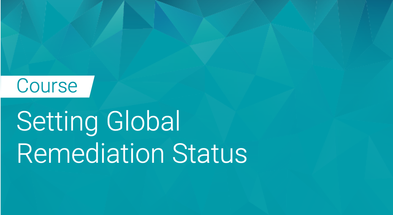 Black Duck: Setting Global Remediation Status