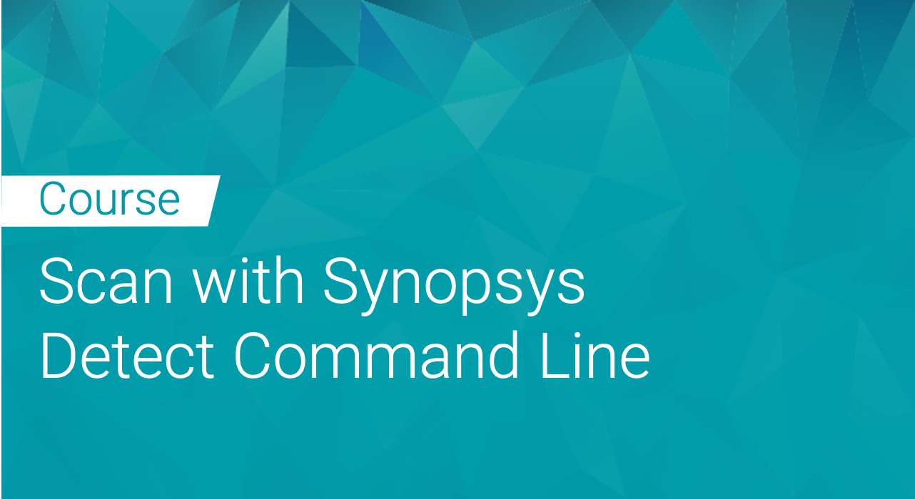Black Duck Binary Analysis Integrated: Scan with Synopsys Detect Command Line