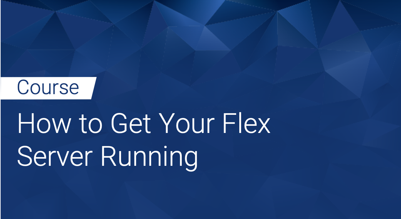 Defensics: How to Get Your Flex Server Running