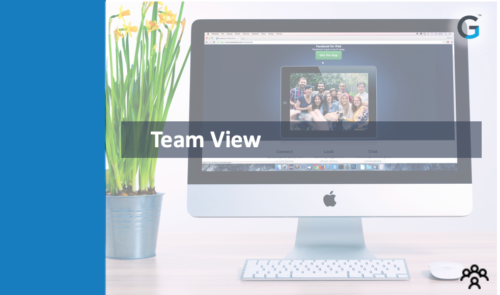 Gainsight - Team View - SFDC