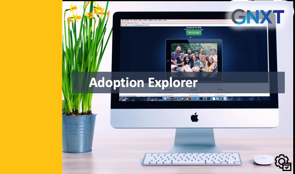 Admin - Adoption Explorer