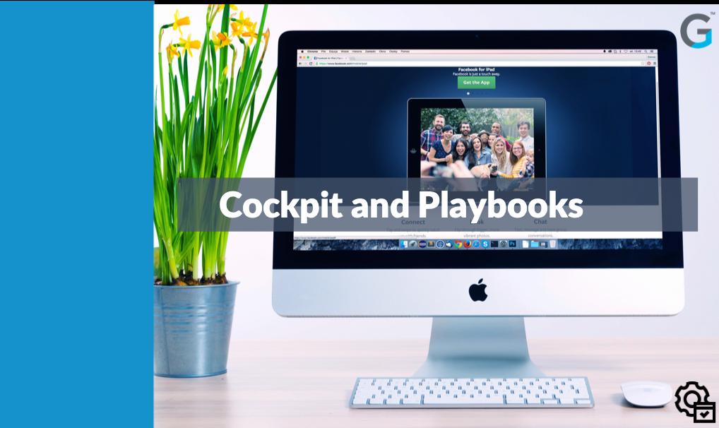 Admin - Cockpit & Playbooks - SFDC & NXT
