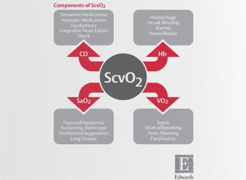 Scv02 Reference