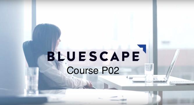 The Bluescape Architecture